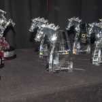 WAROA_2015AwardsNight_034